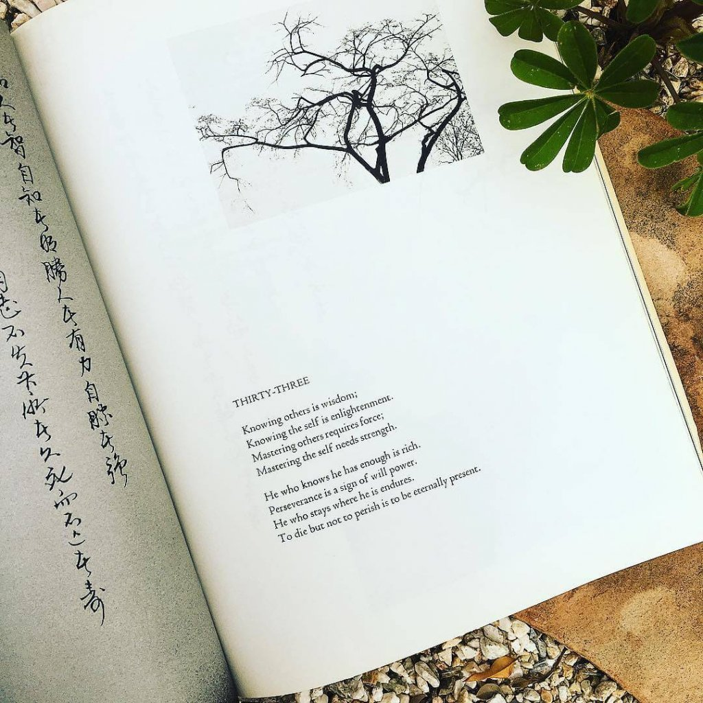 Tao Te Ching Summary